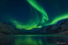 Polarlicht_Tromso_Norwegen_10_-_15587